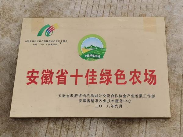安徽省十佳绿色农场