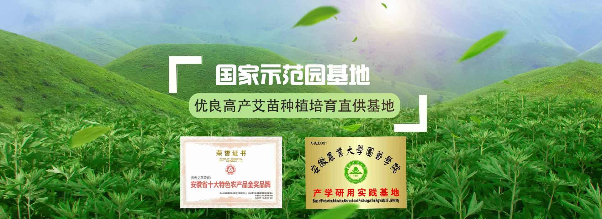 绿爱-国家示范园种植基地